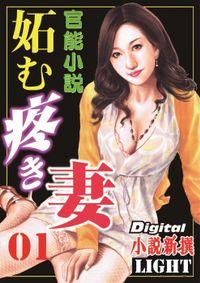 【官能小説】妬む疼き妻01