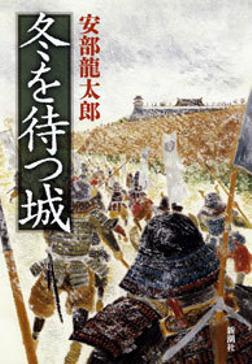 冬を待つ城-電子書籍
