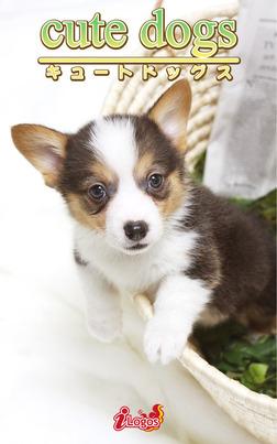 cute dogs35 ウェルシュ・コーギー-電子書籍