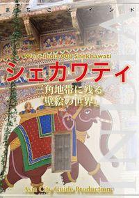 【audioGuide版】西インド008シェカワティ ~三角地帯に残る「壁絵の世界」