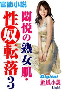 【官能小説】悶悦の熟女肌・性奴転落03