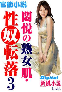 【官能小説】悶悦の熟女肌・性奴転落03-電子書籍