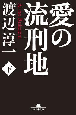 愛の流刑地(下)-電子書籍