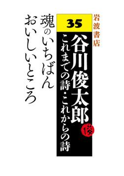谷川俊太郎~これまでの詩・これからの詩~35 魂のいちばんおいしいところ-電子書籍