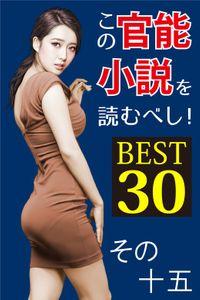 この官能小説を読むべし! BEST30 その十五
