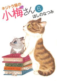 キジトラ猫の小梅さん(6)