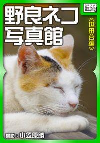 野良ネコ写真館【世田谷編】