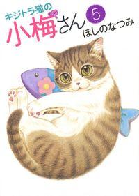 キジトラ猫の小梅さん / 5