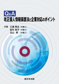 Q&A 改正個人情報保護法と企業対応のポイント-電子書籍