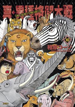 真・異種格闘大戦 : 10-電子書籍