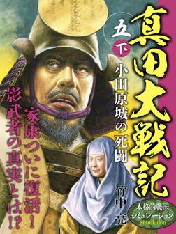 真田大戦記 五 下 小田原城の死闘-電子書籍