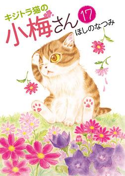キジトラ猫の小梅さん / 17-電子書籍