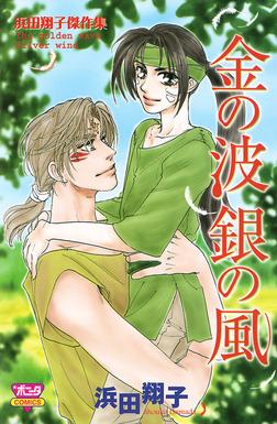 金の波銀の風―浜田翔子傑作集―-電子書籍
