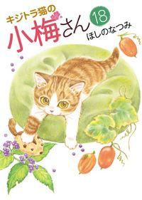 キジトラ猫の小梅さん(18)