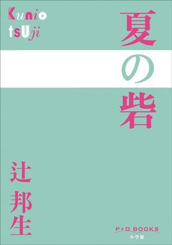P+D BOOKS 夏の砦-電子書籍
