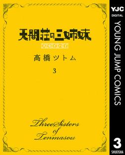 天間荘の三姉妹 スカイハイ 3-電子書籍