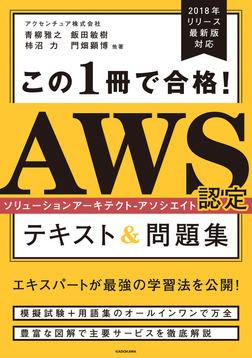 この1冊で合格! AWS認定ソリューションアーキテクト - アソシエイト テキスト&問題集-電子書籍