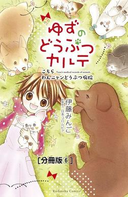 ゆずのどうぶつカルテ~こちら わんニャンどうぶつ病院~ 分冊版(6) オオカミ犬・こまち-電子書籍