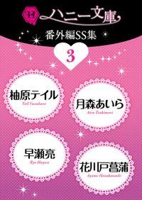 ハニー文庫番外編SS集3