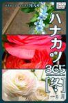 ハナカツ365(impress QuickBooks)
