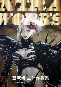 NIRA WORKS 韮沢靖立体作品集 電子版-電子書籍