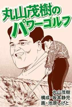 丸山茂樹のパワーテクニック-電子書籍