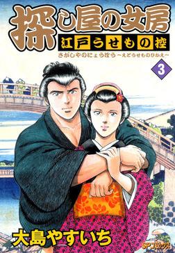 探し屋の女房~江戸うせもの控~ 3-電子書籍