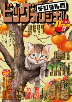 ビッグコミックオリジナル増刊 2020年11月増刊号(2020年10月12日発売)-電子書籍