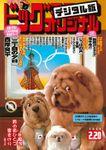 ビッグコミックオリジナル 2020年4号(2020年2月5日発売)