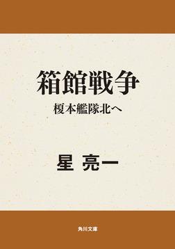 箱館戦争 榎本艦隊北へ-電子書籍