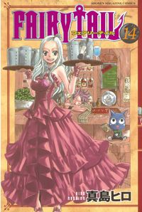 FAIRY TAIL(14)