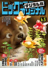 ビッグコミックオリジナル 2020年11号(2020年5月20日発売)