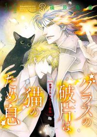 グラスの破片は猫のため息(Nemuki+コミックス)