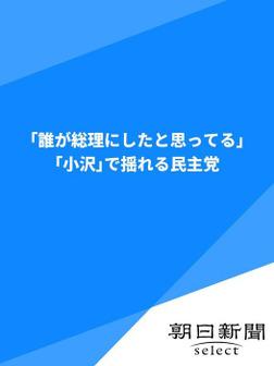 「誰が総理にしたと思ってる」 「小沢」で揺れる民主党-電子書籍