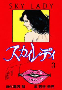 スカイレディ 3-電子書籍
