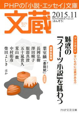 文蔵 2015.11-電子書籍