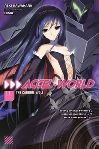 Accel World, Vol. 11