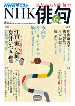 NHK 俳句 2021年6月号-電子書籍