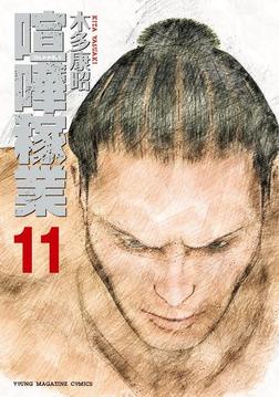 喧嘩稼業(11)-電子書籍