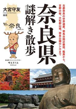 奈良県謎解き散歩-電子書籍