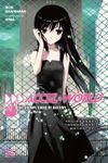 Accel World Light Novel