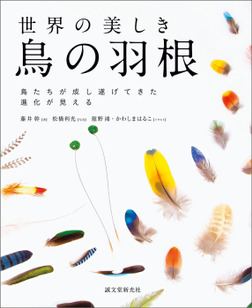 世界の美しき鳥の羽根-電子書籍