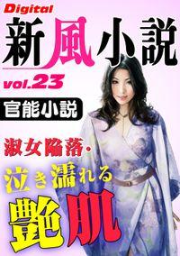【官能小説】淑女陥落・泣き濡れる艶肌 ~Digital新風小説 vol.23~