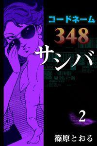 コードネーム348 サシバ (2)