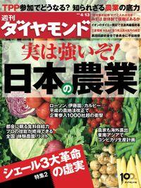 週刊ダイヤモンド 13年4月13日号