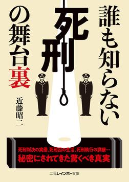 誰も知らない死刑の舞台裏-電子書籍