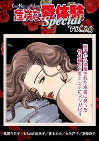 危険な愛体験special 29