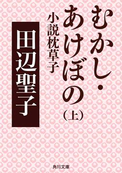 むかし・あけぼの 上 小説枕草子-電子書籍