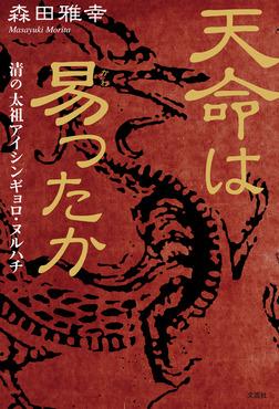 天命は易ったか 清の太祖アイシンギョロ・ヌルハチ-電子書籍
