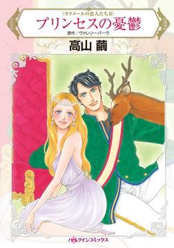 プリンセスの憂鬱-電子書籍